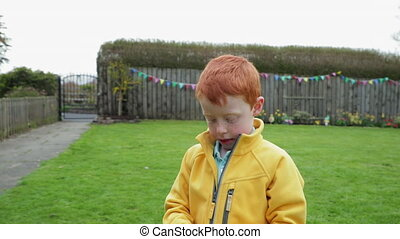 Tracking shot of a little boy walking with a hand full of chocolate easter eggs which he has found in the back garden.