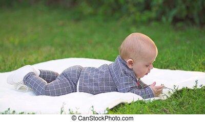 little boy on a plaid