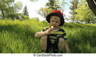 Little boy on meadow with dandelion