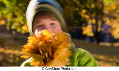 Little boy on park with yellow leaves