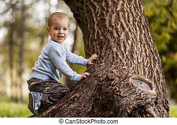 Little boy on the tree