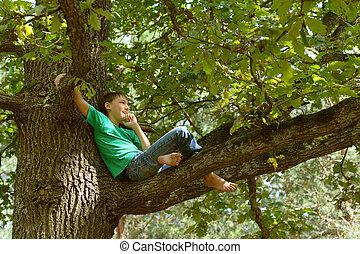 Little boy on tree