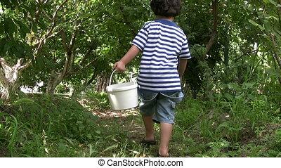 Little Boy picking cherry