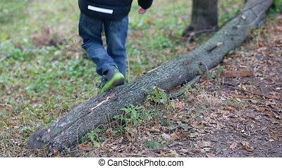 Little boy play with a fallen tree