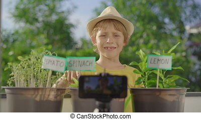 Little boy records a vlog about his small home garden on a balcony. Home farming concept. Vlogging kids.