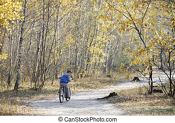Little boy riding a bike on the road in the autumn forest.