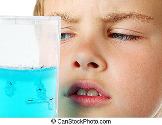 Little boy scrutiny looks into helium aquarium - ant farm -...