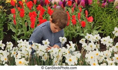 Little boy sits on footpath near flowerbeds