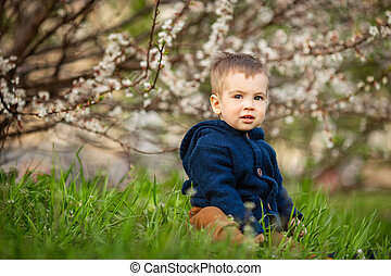 little boy sitting in the green grass
