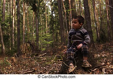 Little boy sitting on a tree stump