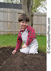 Little boy smiles while planting bean seeds - A little boy...