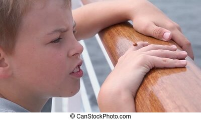 boy stands on deck near fence and watches ladybird