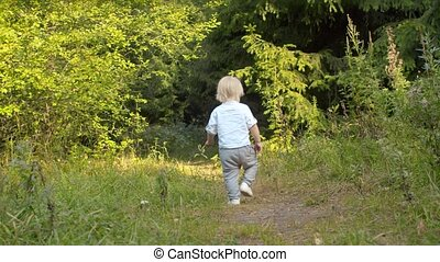 Little boy walking along the path in the forest