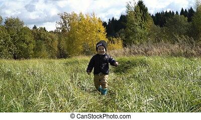 Little boy walks in the park