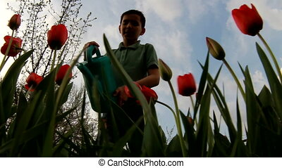 Little boy watering the garden