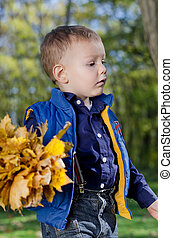 Little boy with autumn leaves