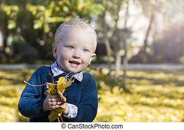Little boy with autumn leaves in the park. Baby in autumn
