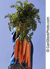 Little boy with carrots in his hand. No face. Blue sky background. Healthy concept