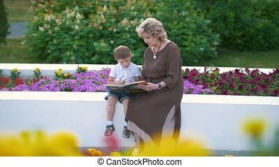 Little boy with grandmother watching a book with pictures at in the park