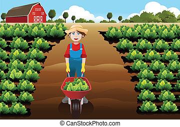 Little boy working in a vegetable farm
