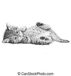 Little cat hand drawn