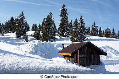 Little chalet and fir trees by winter