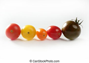 Little cherry varied multi color tomatoes, at studio, white background