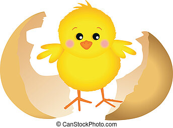 Little chick design, vector design, clip art