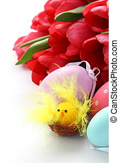 Little chicken, colorful easter eggs and pink tulips