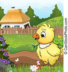 Little chicken on a green meadow in front of a farmhouse...