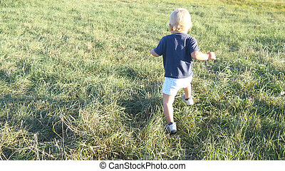 Little child goes on green grass at the field at sunny day. Baby walking at the lawn outdoor. Toddler learning to walk in nature. Happy boy on a summer meadow. Rear back view. Close up.