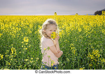 little child in scenic yellow rapeseed field