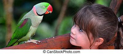 Little child looks at Alexandrine Parrot