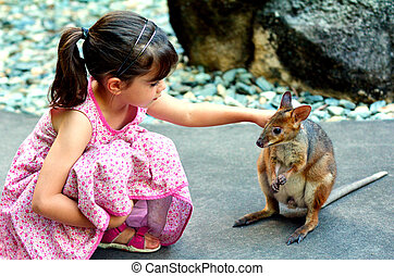 Little child petting a wallaby in Queensland, Australia - ...