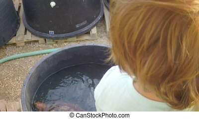 child viewing on healing turtle on rescue center - little...