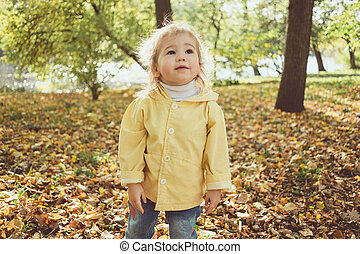 Little child walks in the park in autumn among the leaves