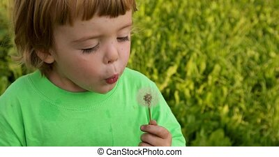 Little child with blowing dandelion. Spring outdoors...