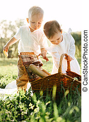 Little children are looking for food in a wicker picnic basket on the lawn.