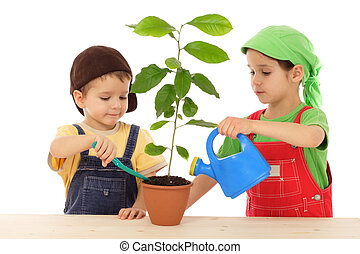 Little children caring for plant, isolated on white