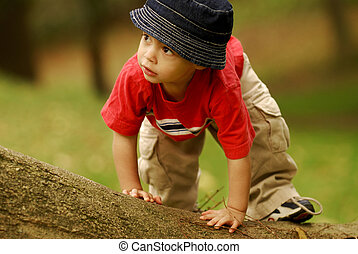 Little Climber - Small boy climbing over a fallen tree.