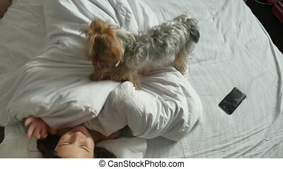 Little cute girl and dog indoors sleeping in bed. little...