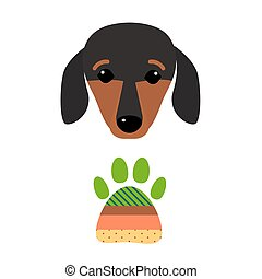 Little dachshund puppy head purebred mammal sweet dog young pedigreed animal breed vector illustration