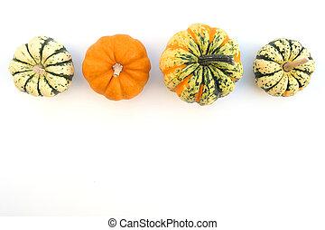 Little decorative pumpkins on white background.