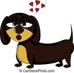Little dog - Lovely little dachshund (seductive female)