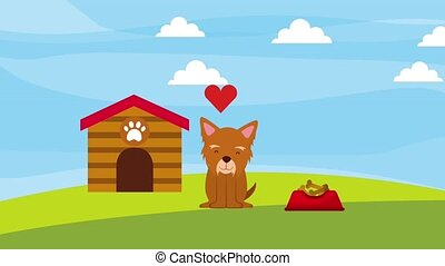 little dog mascot love wooden house and food animation hd