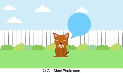 little dog mascot sitting in backyard with fence animation...