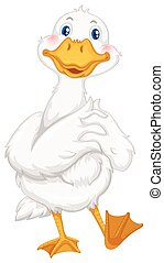 Little duck with white feather