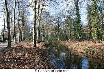 Dutch river in beautiful forest landscape