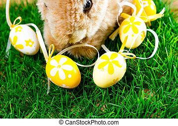 Easter rabbit on spring green grass