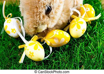 Little Easter rabbit on spring